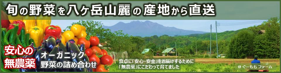 萌木の村の八ヶ岳地ビールタッチダウン